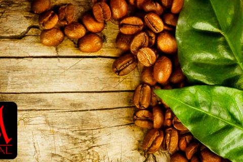Зеленый кофе для снижения веса Alpha Royal Green Coffee и натуральный зерновой кофе Alpha Royal Coffee (США). Скидка до 73% от КупиКупон